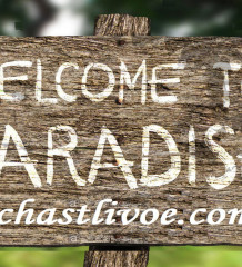 welcome-to-paradise-wood-sign2